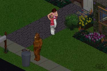 bear at the garbage can scares sims child